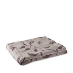PHOTO - Blanket